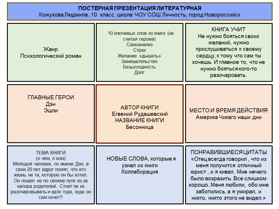 Проект по книге «Бессонница» Е. Рудашевский
